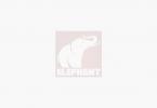 The Elephant - default image