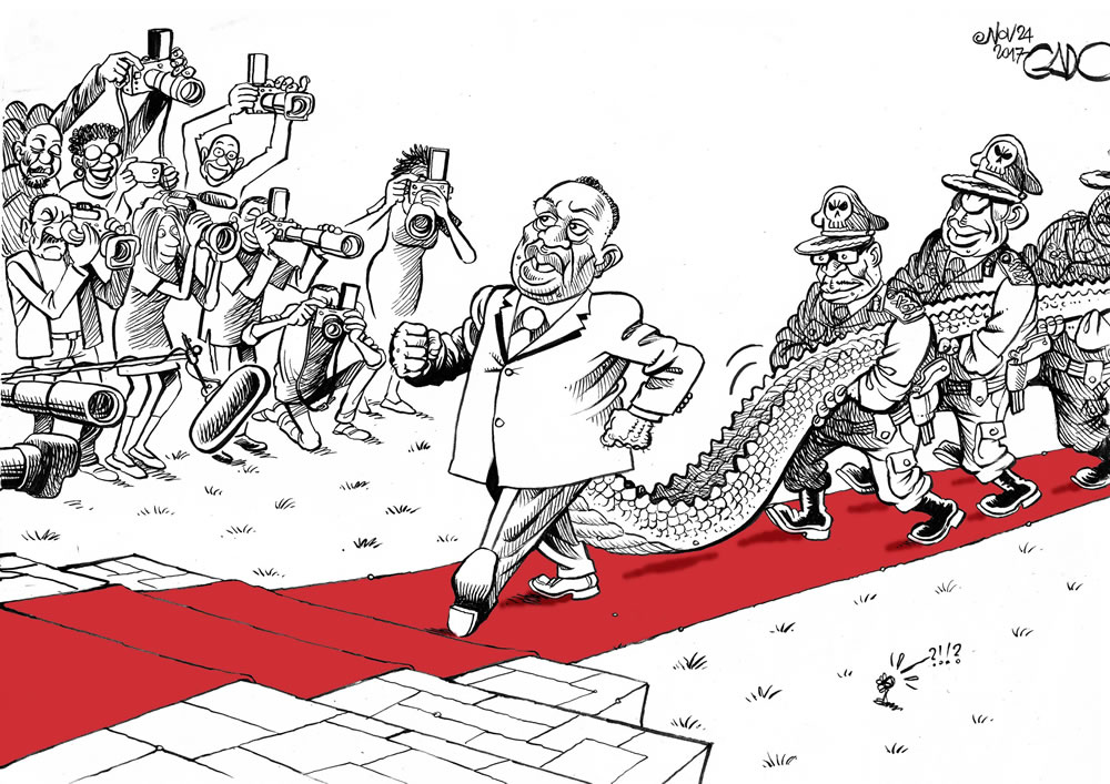 The Crocodile Takes Office in Zim