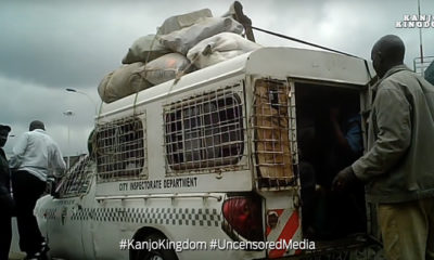 Kanjo Kingdom - Part 1