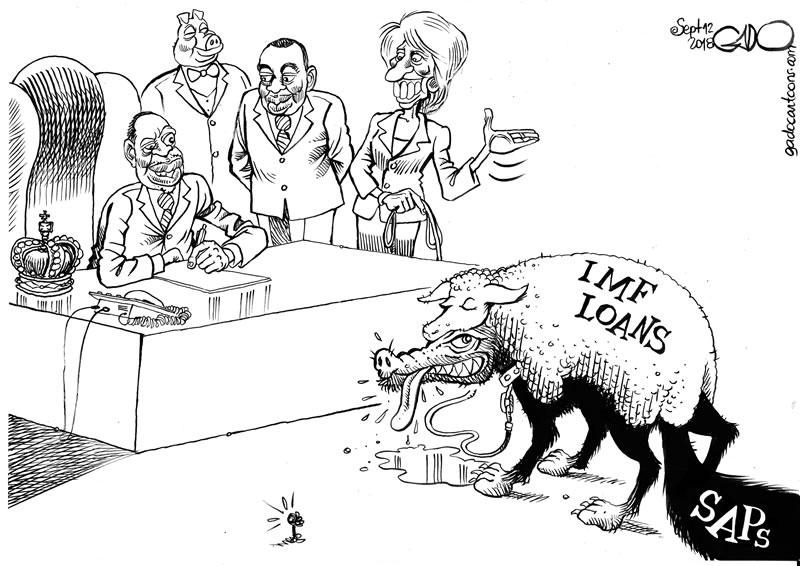 New IMF SAPs!
