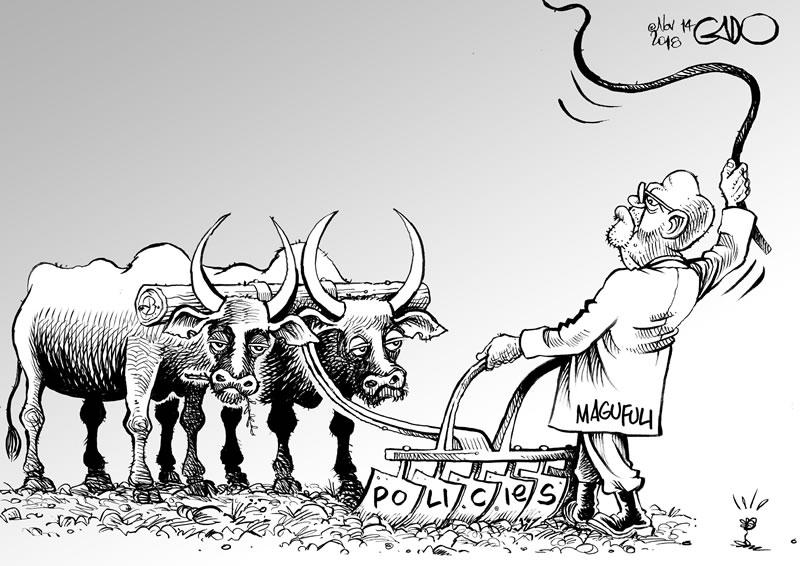 Magufuli and His Policies