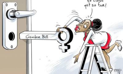Gender Bill 2019!