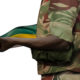 Zimbabwe Dared to Be Free, Then the Military Arrived