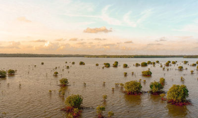 First Came the Floods, Then Came the Pandemic