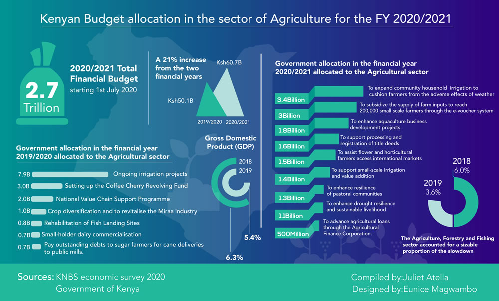 Kenyan Budget Allocation in the Sector of Agriculture for the FY 2020/2021