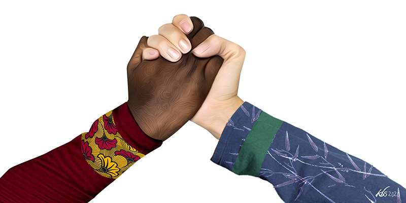 An Unlikely Alliance: What Africa and Asia Can Teach Each Other