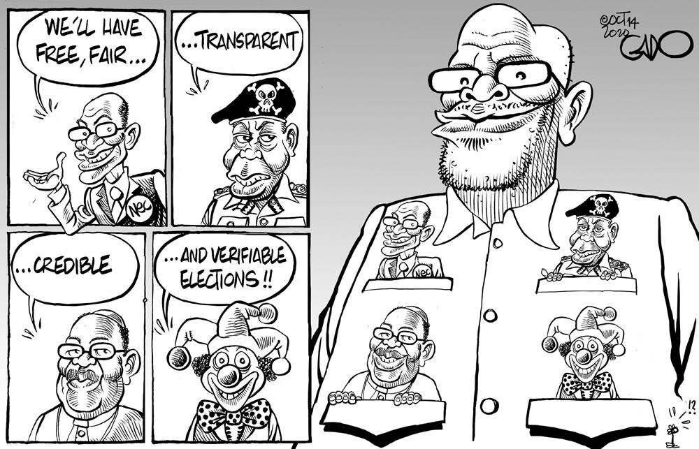 Elections in Tanzania