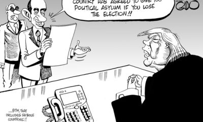 Trump Seeking Political Asylum!