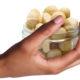 The History and Uncertain Future of Macadamia Farming in Kenya