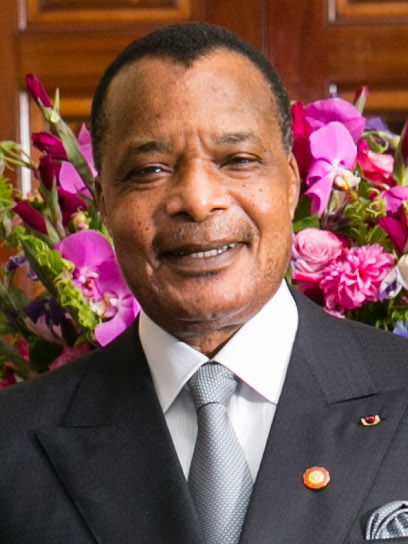 President Denis Sassou-Nguesso is seen in 2014. Credit: Wikimedia Commons/Amanda Lucidon/White House