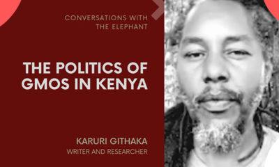 The Politics of GMOs in Kenya