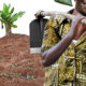 The Struggle for Africa's Food Sovereignty