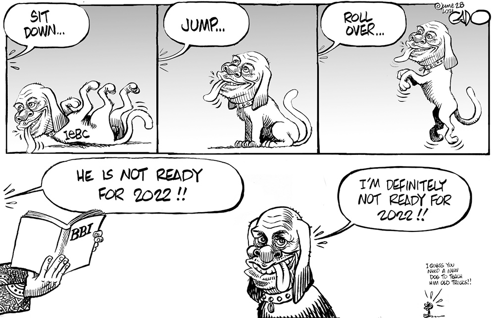 Electoral Commission and the Kenya Elections 2022
